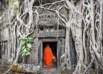 Ta Prohm temple in Angkokr, Camobida