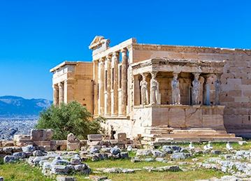 NEW! Ancient Mediterranean Antiquities