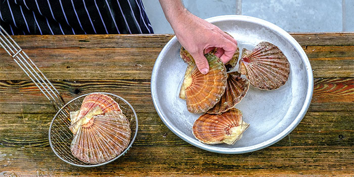 Person handling scallops