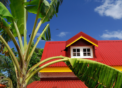 A bright red roofed building with a banana tree in Guadeloupe