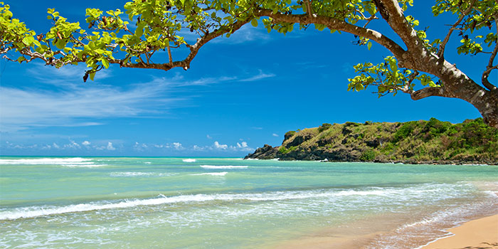 A tropical beach in blue and green in Puerto Rico